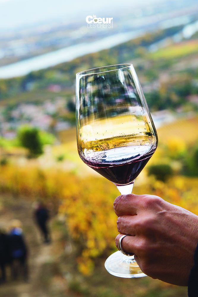 vins colombo 09
